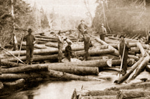 logs-on-river